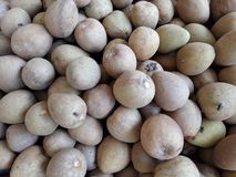 Chico Fruit. Bunch of brown ripe chico fruit displayed in market stock photo