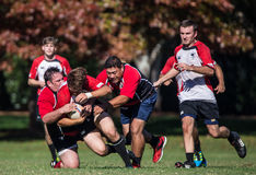 Chico vs. Sacramento Rugby Royalty Free Stock Image