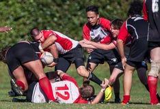 Chico vs. Sacramento Rugby Stock Image