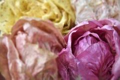 Chicorée crue rose, chicorée variée et radicchio organique rose, production biologique, salade variée images stock