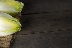 Chicorée frisée e/scarole verte fraîche Image stock