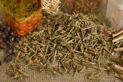 Chicorée sèche (herbes médicinales sèches) Images libres de droits