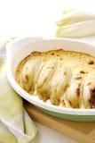 Chicory au gratin Stock Image