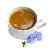 Chicory drink in white cup with blue flower Stock Images