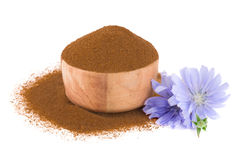 Chicory flower and powder of instant chicory isolated on a white background. Cichorium intybus. Stock Photos
