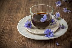 Free Chicory Flowers And Tea From Chicory Stock Image - 56658911