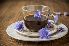 Chicory flowers and tea from chicory Stock Image