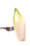 Chicory on a fork Royalty Free Stock Images