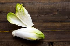Chicory Fresh Salad. Raw Witloof Organic Healthy Food. Chicory Green Fresh Salad. Raw Witloof Organic Healthy Food stock images