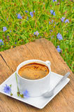 Chicory hot drink Royalty Free Stock Images