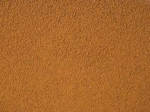 Chicory powder. Close up texture Stock Image