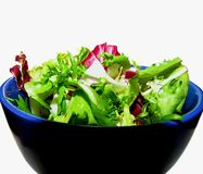 Chicory, radicchio and endive salad stock photography