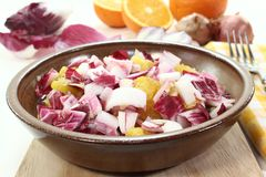 Chicory salad Stock Images