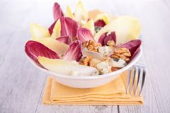 Chicory salad Royalty Free Stock Images