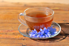 Chicory tea. Tea brewed from chicory. Chicory tea. A cup of tea with the blue flowers of chicory. A cup of tea on a wooden table. Medicinal tea on the basis of Stock Photo