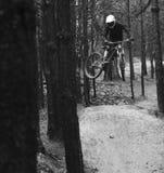 Chicote Biking da montanha imagens de stock royalty free