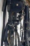 Chicote de fios do cavalo Foto de Stock