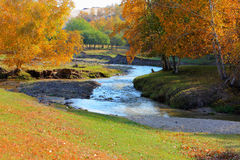 chińczyka grobelne wewnętrzne Mongolia prerii rzeki Zdjęcie Royalty Free