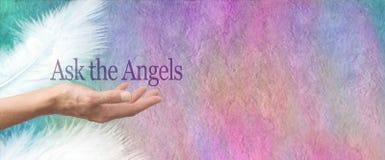 Chieda la vostra insegna della pergamena di angeli immagine stock libera da diritti