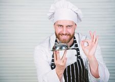 Chief cook gesturing ok sign. Master chef serving meal in restaurant. Handsome man in apron and cook hat. Chef cook in stock photos