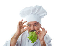 Chief cook holding lettuce Royalty Free Stock Photo