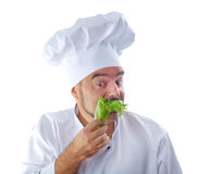 Chief cook holding lettuce Stock Photos