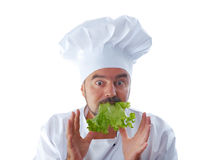Chief cook holding lettuce Royalty Free Stock Image