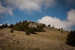 Chief Mountain, Colorado Royalty Free Stock Photo