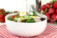 Chief salad Stock Photography