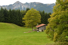 Chiemgau Bayern, Tyskland Tyskt alpint bygdlandskap Arkivbilder