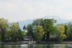 chiemsee湖结构树 免版税库存图片