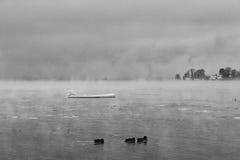 Chiemsee vinter Arkivbilder