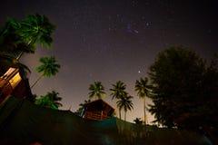 Chien à la plage de Palolem, Goa Images libres de droits