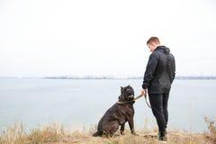 Chien étonnant fort marchant avec le propriétaire dehors Concept d'animal familier Photo stock