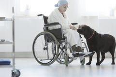 Chien aidant la femme supérieure handicapée photographie stock libre de droits