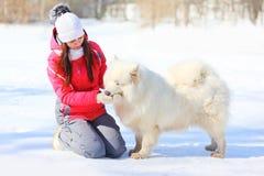 Chien blanc de alimentation de Samoyed de propriétaire de femme avec des mains en hiver Image stock