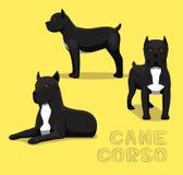 Chien Cane Corso Cartoon Vector Illustration Image libre de droits