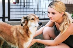 Chien choyant de propriétaire Propriétaire féminin de choyer leur chien dans le jardin Image libre de droits