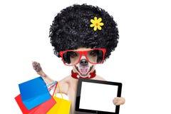Chien d'achats Photos libres de droits