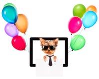 Chien d'affaires tenant la bannière sur un écran de comprimé Photo stock