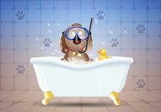 Chien dans le bain avec le masque de plongée Photographie stock