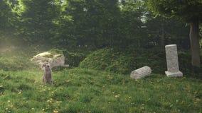 Chien dans le jardin secret rendu 3d Photos stock