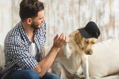 Chien dans un chapeau donnant la patte à l'intérieur Photographie stock libre de droits