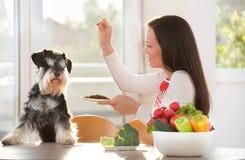 Chien de alimentation de femme à la table de cuisine Images stock