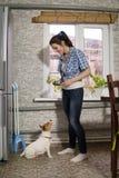 Chien de alimentation de jeune femme Photographie stock libre de droits