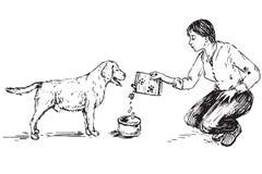 Chien de alimentation Labrador de jeune femme illustration libre de droits
