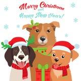 Chien de bande dessinée avec la carte de vecteur de Santa Hat And Christmas Text pour vos cartes de voeux de Noël, invitations Images libres de droits