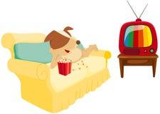 Chien de bande dessinée refroidissant avec le maïs éclaté et la télévision Photos stock