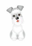 Chien de Cesky Terrier Photo stock