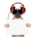Chien de disco du DJ Photo stock